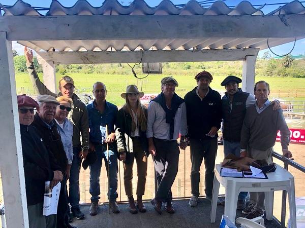 Don Jacinto y La Tapera dispersaron sus toros y vientres, a un máximo de US$ 6.480