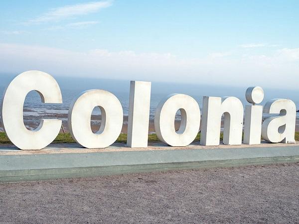 Colonia fue el departamento de mayor exportación en 2020