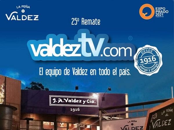 Mañana, desde el Prado, Valdez rematará 3.500 vacunos