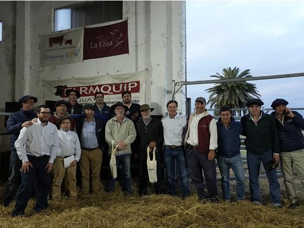 La Elisa colocó todos sus toros a US$ 6.000 máximo