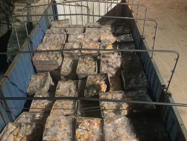 Policía incautó 6 toneladas de carne de pollo que ingresó de forma irregular al país