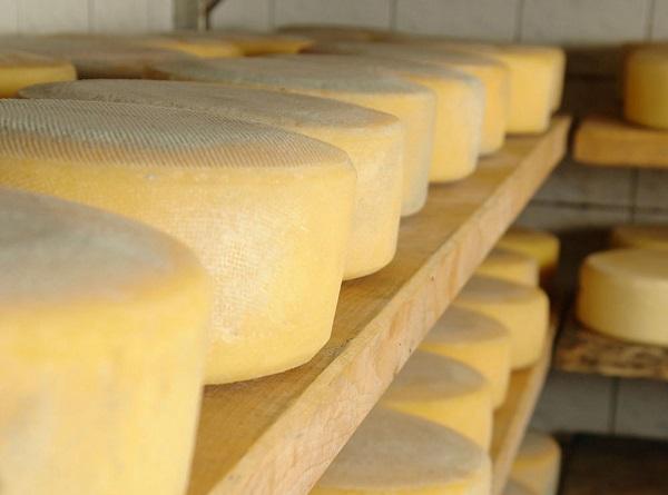 Con ventas totales se realizó la feria de quesos
