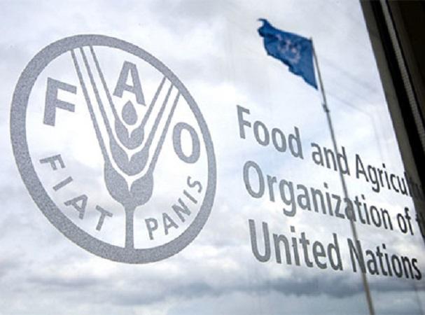 El índice de precios de los alimentos de la FAO repuntó con rapidez en agosto