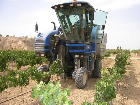 En Chile faltan trabajadores agrícolas, productores invierten en maquinaria