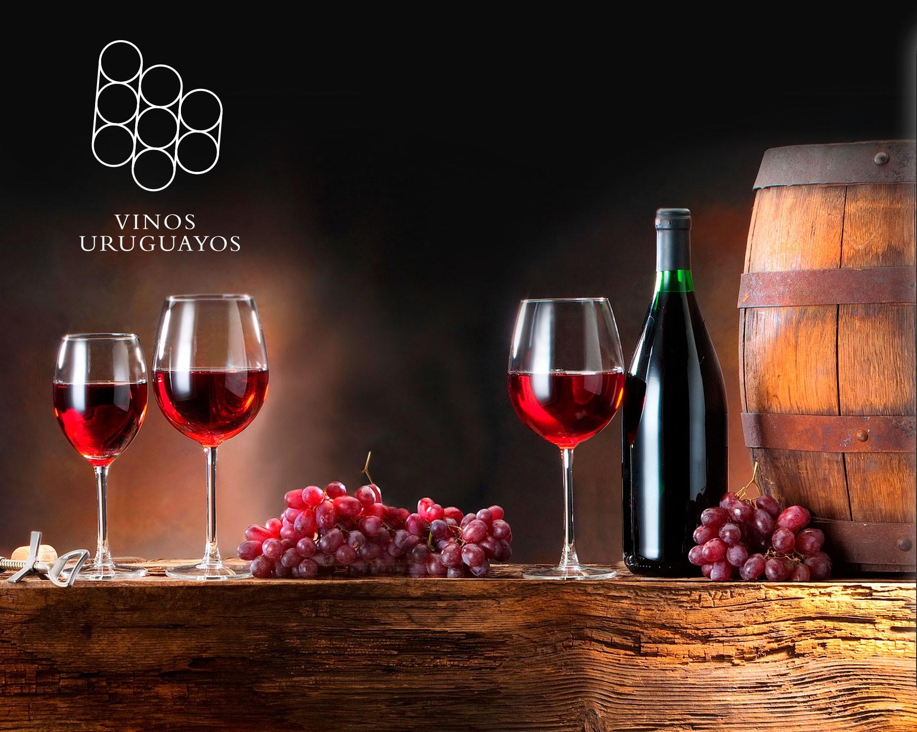 A un año de su lanzamiento, la aplicación que te ayuda a elegir la mejor opción de vinos es todo un éxito.