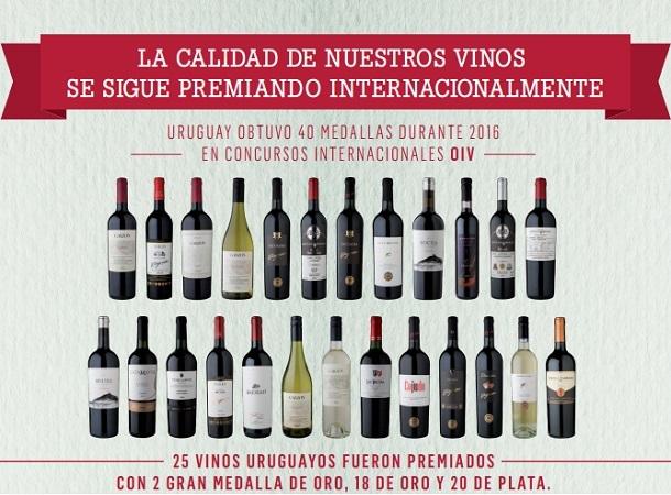 2016 fue un año exitoso para los vinos uruguayos