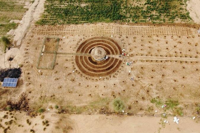 En África desarrollan un plan para frenar la desertificación plantando jardines