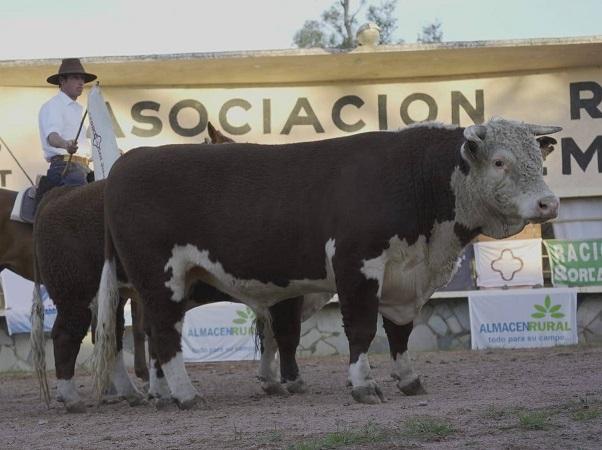 Gran remate de Valdez de los toros de Cerro de San Juan y Santander