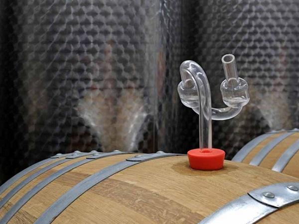 La captura de carbono durante la fermentación podría convertir el vino en una industria de emisiones negativas