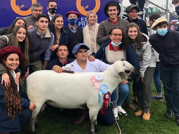 Escuela Agraria de Montes presentó el Reservado Gran Campeón Hampshire Down