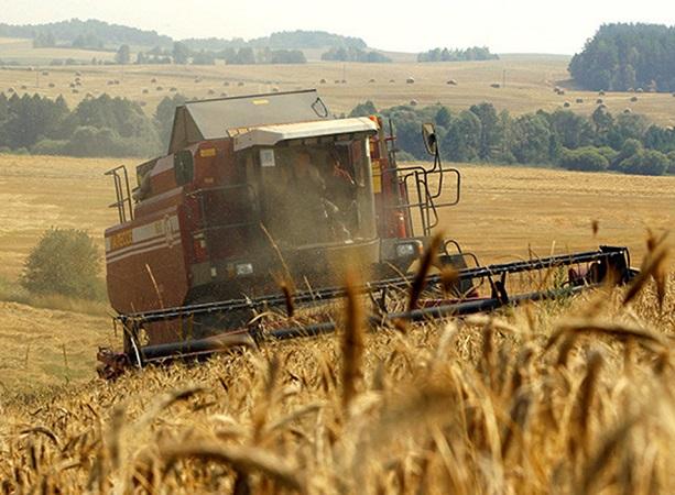 Crisis de fertilizantes en Europa amenaza subir precios de alimentos a las nubes