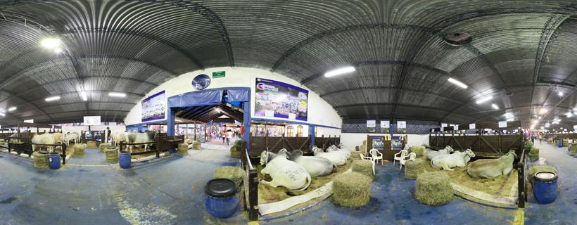 Producción agropecuaria en Paraguay viene en franca expansión