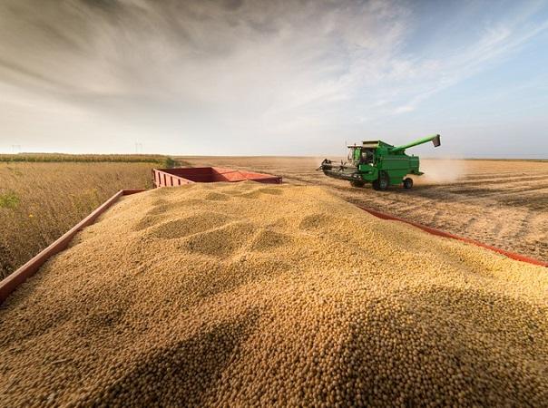 Brasil tendrá un total de 289,6 millones de toneladas de grano de la cosecha 21/22