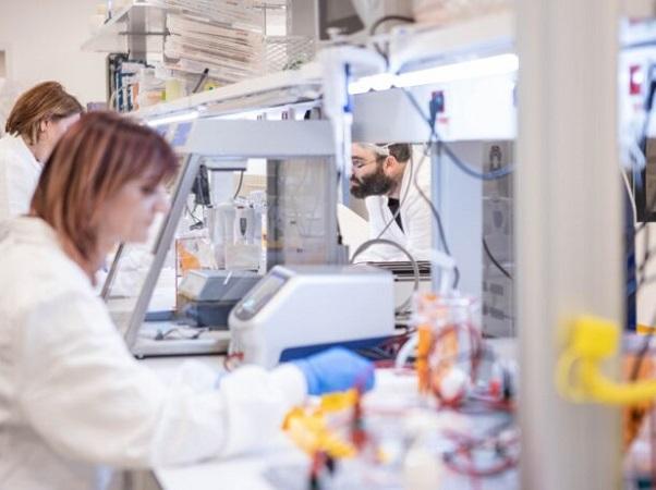 Empresa israelí desarrolla leche cultivada en laboratorios