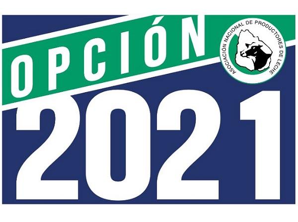 """Opción 2021 ve con """"asombro e incredulidad"""" la postergación de las elecciones de la ANPL"""