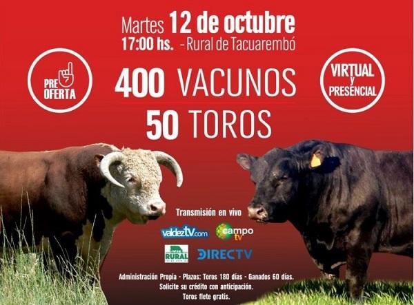 El martes 12 se venden los toros de Cerros de San Juan y Santander