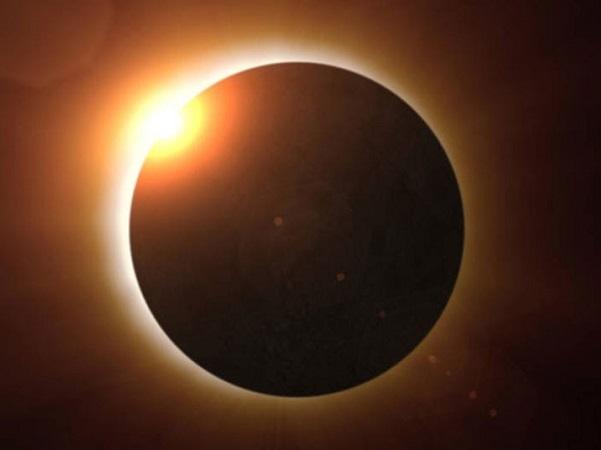 Investigación de la Universidad de Misuri: las abejas y el eclipse.