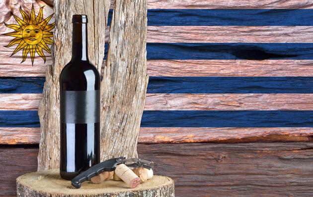 Uruguay exportó 6,5 millones de botellas de vino envasado en 2018