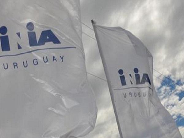 INIA y Fucrea firmarán convenio para la producción sustentable y certificable de uva para vino