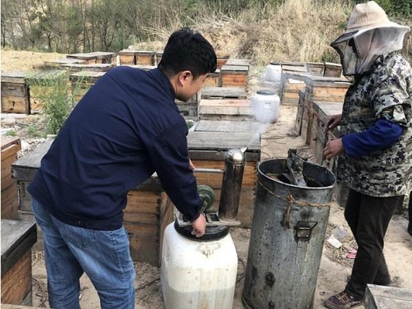Europa compra miel a precios de productos que no lo son