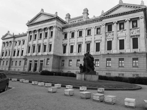 Apicultores se manifestaron en el Palacio Legislativo y pidieron soluciones a su problemática
