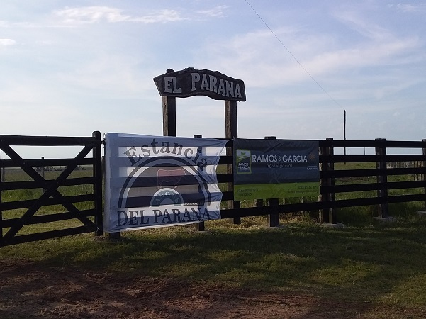 Los toros de El Paraná tuvieron un máximo de U$S 3.600