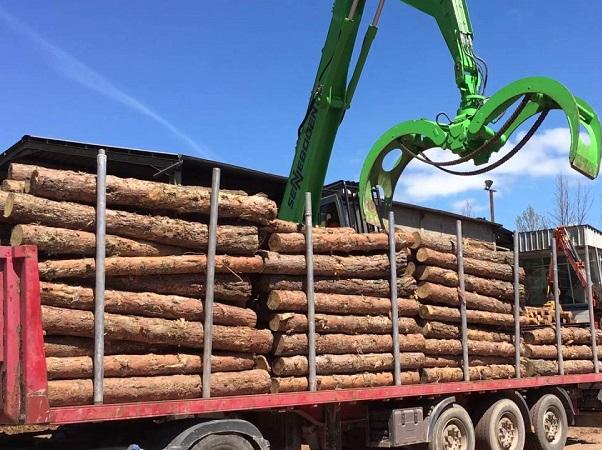 Presidente de la Sociedad de Productores Forestales dijo que que el sector va a continuar creciendo en las exportaciones