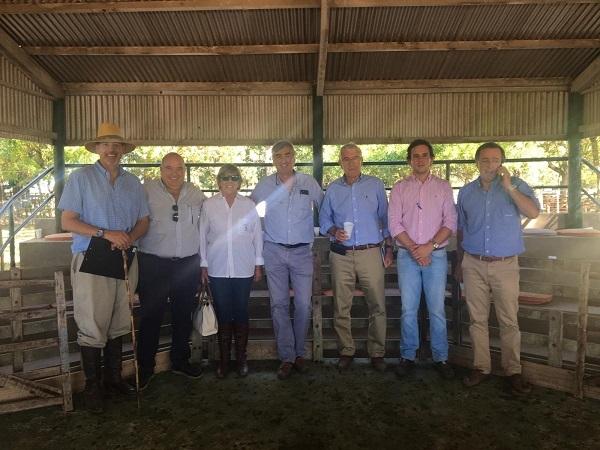 Romualdo Rodríguez vendió los Romney Marsh de Los Charrúas
