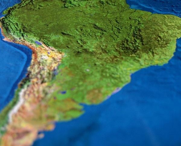 Panorama avícola del continente ante la pandemia del Covid-19