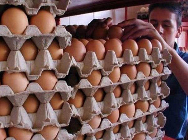 Comer huevo aumenta la inmunidad