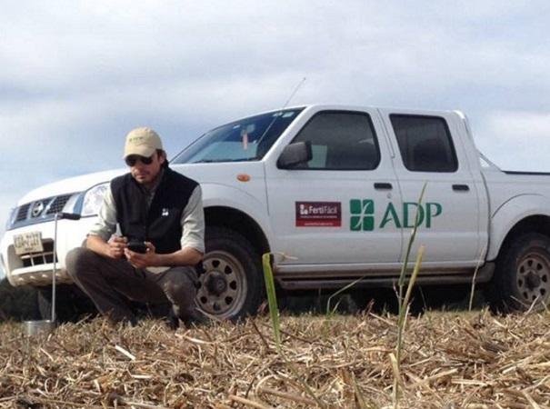 Diego Guigou: los cultivos de invierno se implantaron de manera aceptable