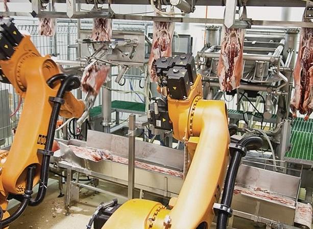 Plantas de faena de EE.UU. se preparan para incorporar sistemas de robótica laboral