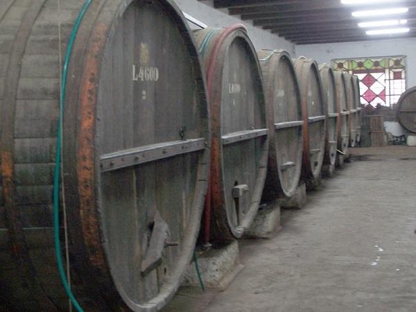El Ministerio de Turismo e Inavi trabajan en la Ruta Nacional del Vino y la Vitivinicultura