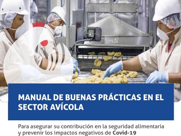 Publicaron manual de buenas prácticas en el sector avícola para enfrentar Covid-19