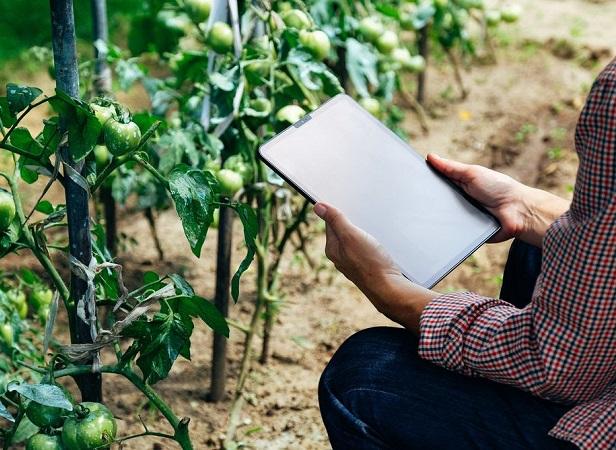 Los desafíos de la agricultura: Alimentar a toda la humanidad y asegurar prosperidad a los que producen