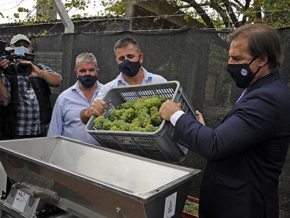 La vitivinicultura que ocupa 40.000 personas contará con nueva sede y laboratorio de punta