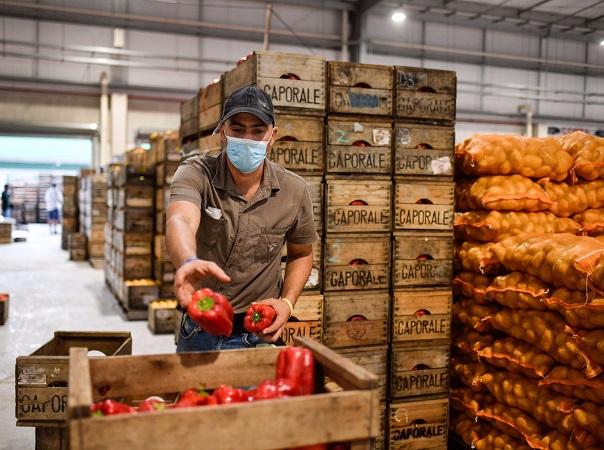 """Ing. Zumaran: en los productores """"hay preocupación por los costos"""""""