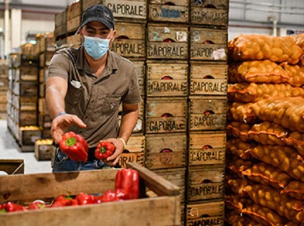 Aparecen en el mercado las primeras frutas de otoño: membrillo, caqui y guayabo