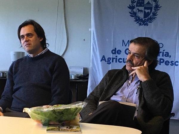 """Ing. Chiesa: """"queremos que la granja exporte el trabajo de los uruguayos"""""""