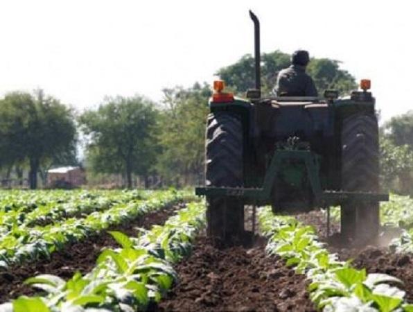 Uruguay es el país de la región con más área con seguro agropecuario