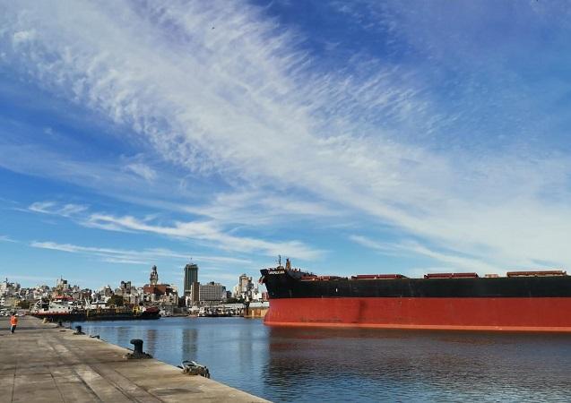 Buque cargará 90.000 Ton. de madera con destino a China