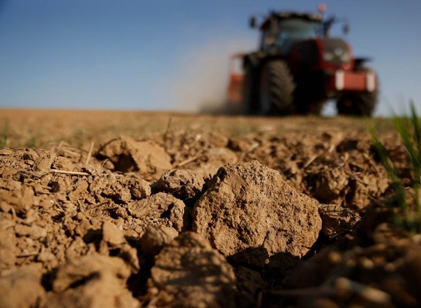 La sequía en Estados Unidos afecta los cultivos