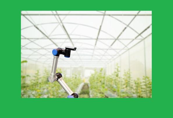 Complejidad, Inteligencia Artificial y el futuro de los alimentos: hacia la era de los agrobots