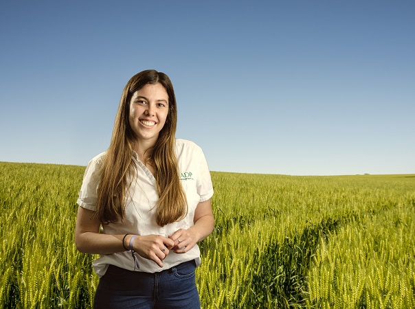 ADP proyecta un 10% del aumento del área en cultivos de invierno