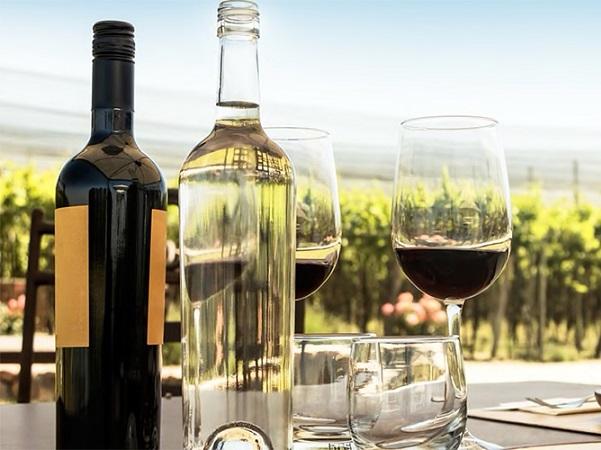 2020, consumo mundial de vino descendió, pero menos de lo previsto