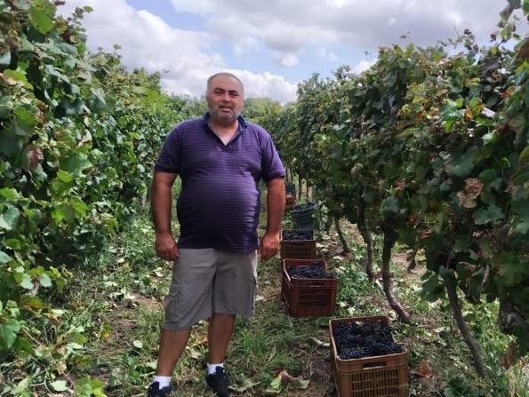 """""""Detrás de un vino elaborado por la cooperativa CAVA, hay trabajo de 23 familias uruguayas"""""""