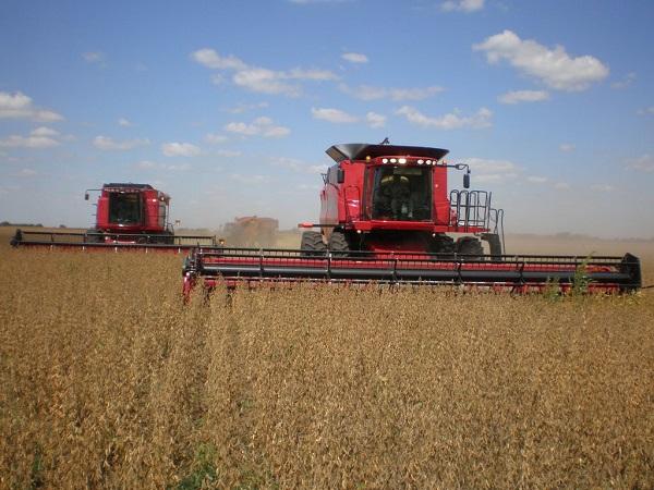 Uruguay asegura el 70% del total del área sembrada