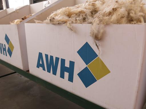 Se recupera el valor de la lana