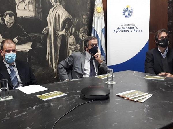 En el Día de las Abejas, el ministro Uriarte resaltó su implicancia social