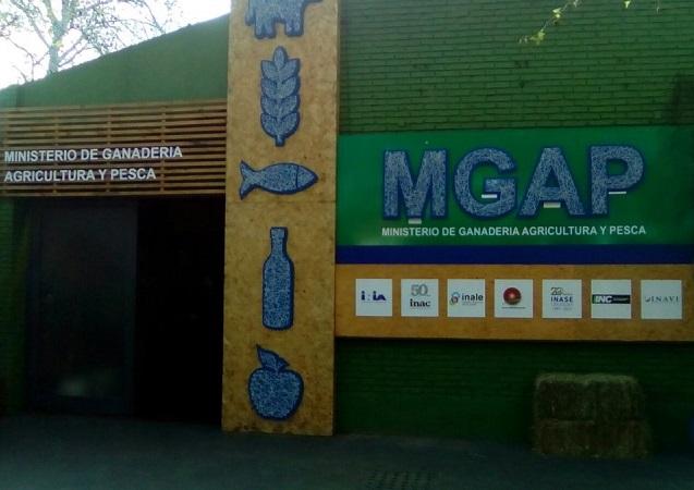 El MGAP realizará consultas a la cadena granjera